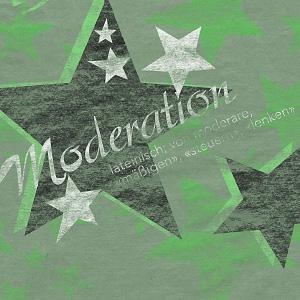 4 dienstl_moderation